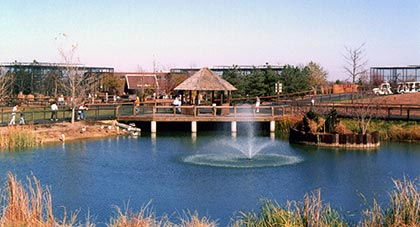 Old photo of the gazebo and pond at RHZ