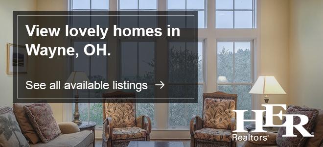 Homes for Sale Wayne Ohio