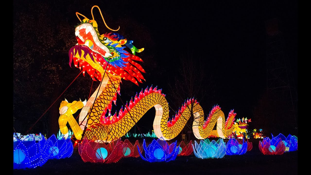 lit chinese dragon decoration