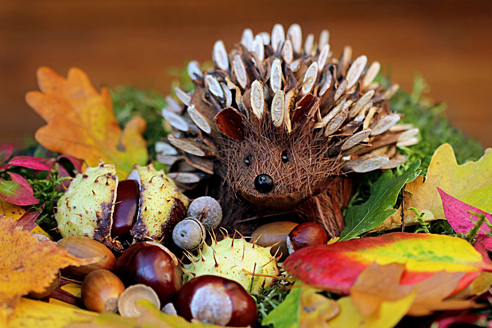 decorative hedgehog on fall leaves