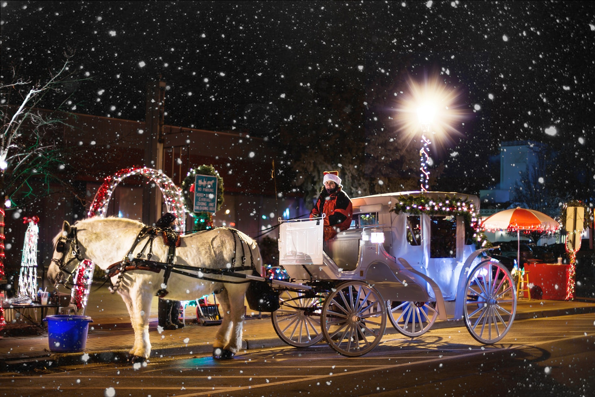 woman riding holiday carriage in the snow