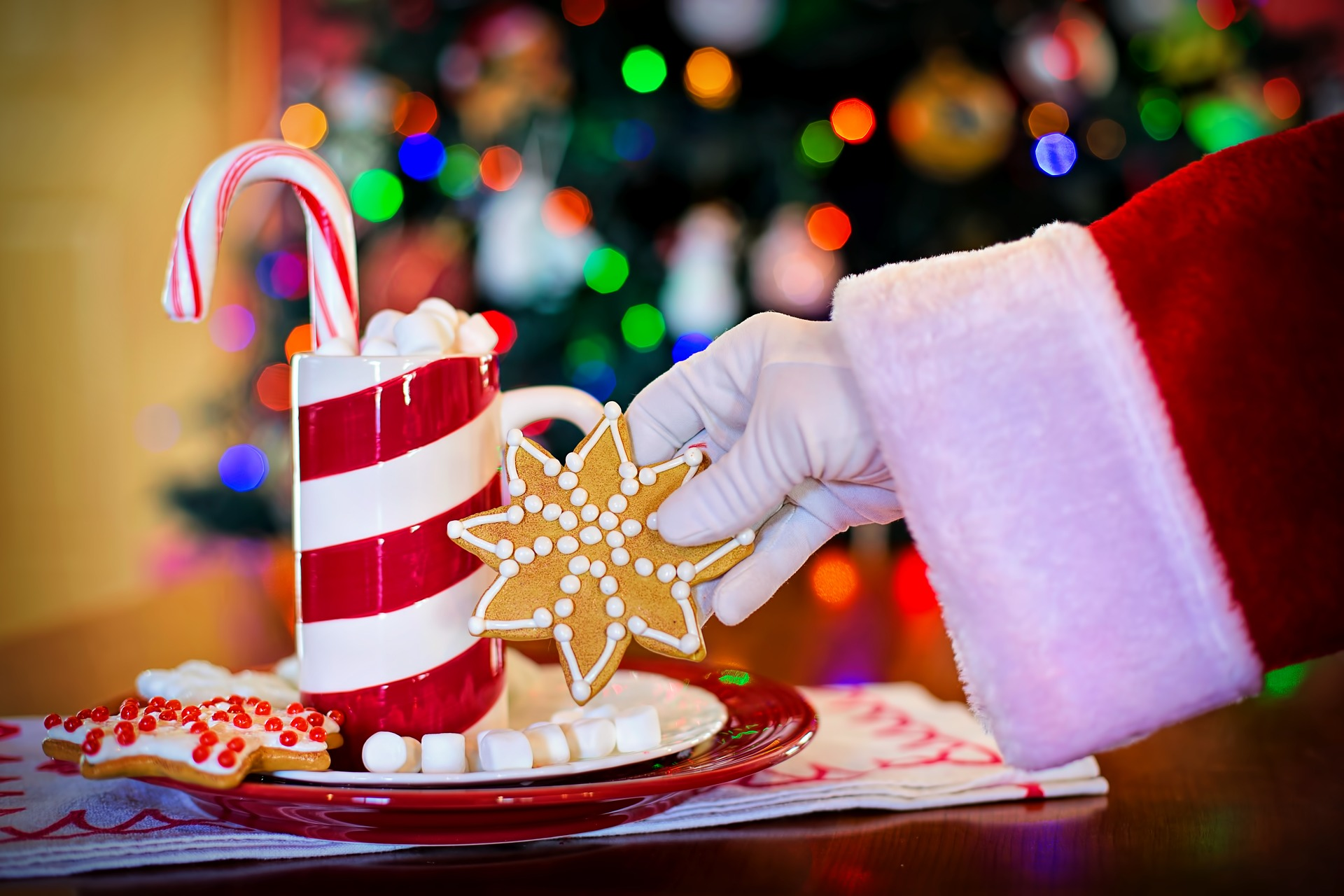santa's arm holding cookies & hot chocolate