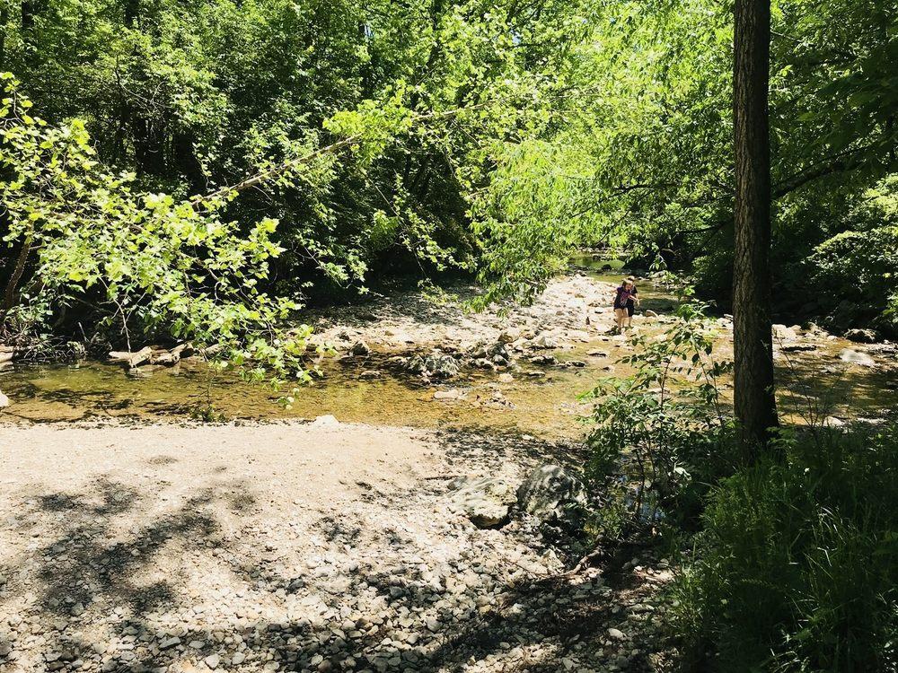 Magee Park Creek