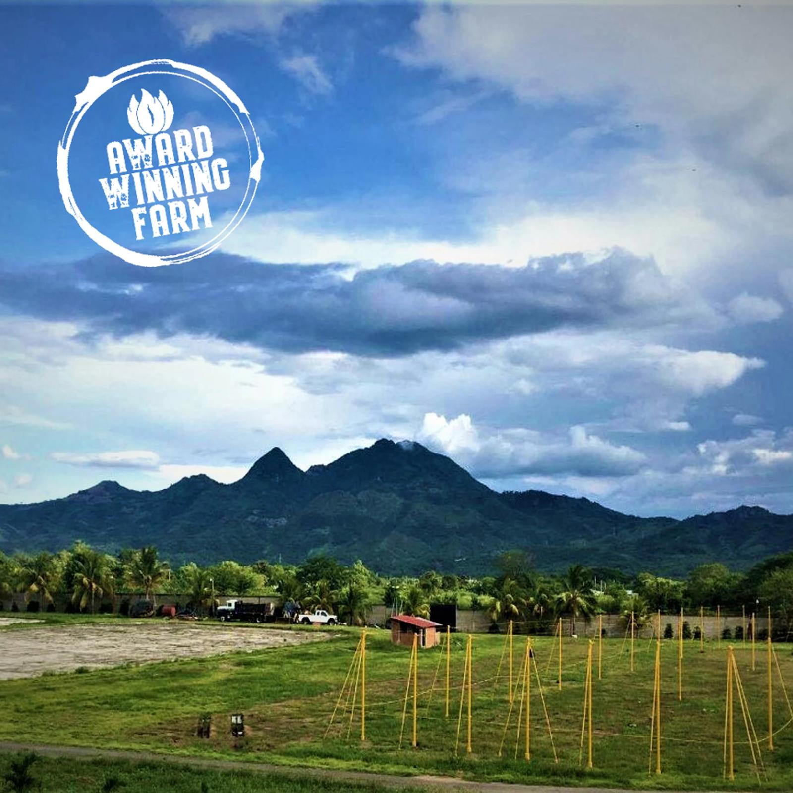 An award-winning farm in Nicaragua
