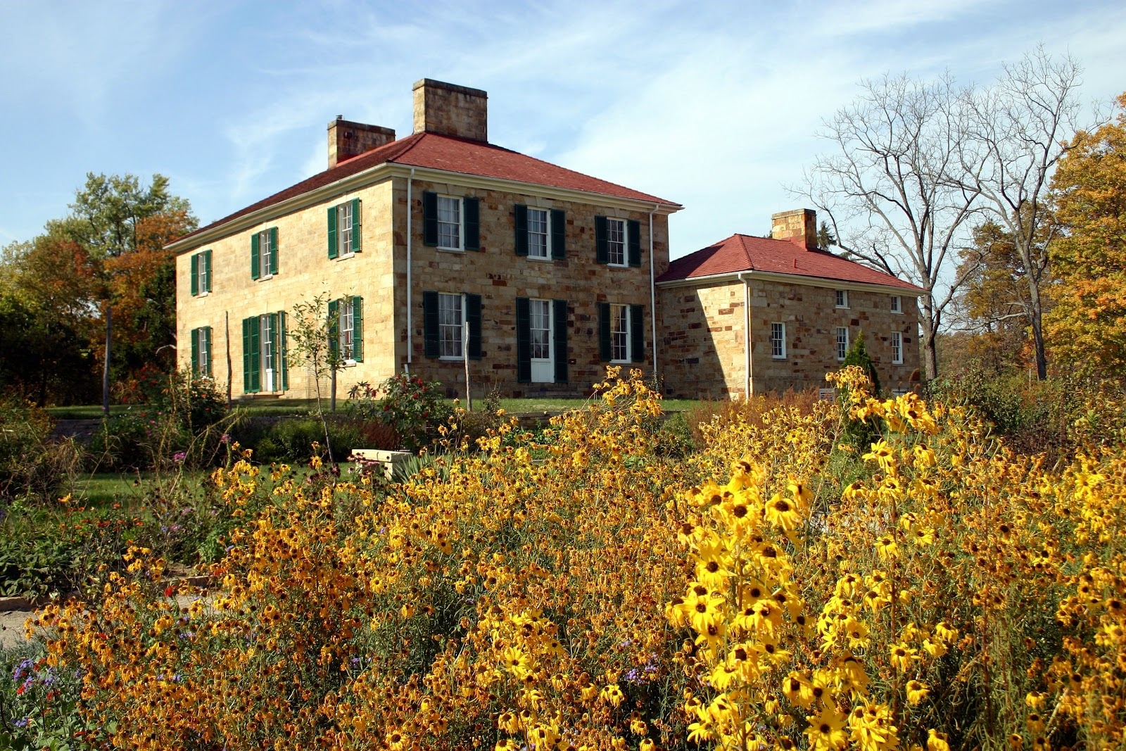 bush with sunflowers in front of mansion