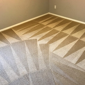 carpet cleaning results for a colorado springs home
