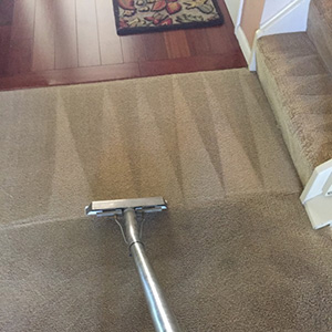 residential carpet cleaning project