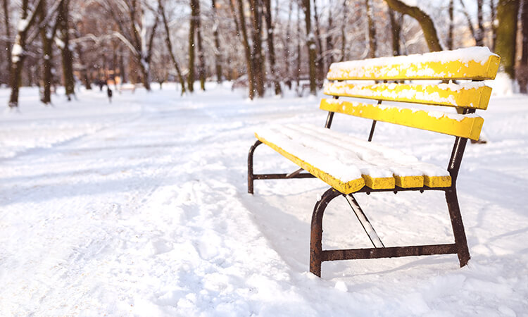 yellow bench in the park covered in snow
