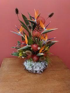 Sj Flowers & Landscaping Flowers