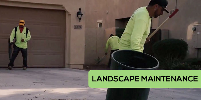 Little John's Lawns Landscape Maintenance in Gilbert, Mesa, and Chandler Arizona