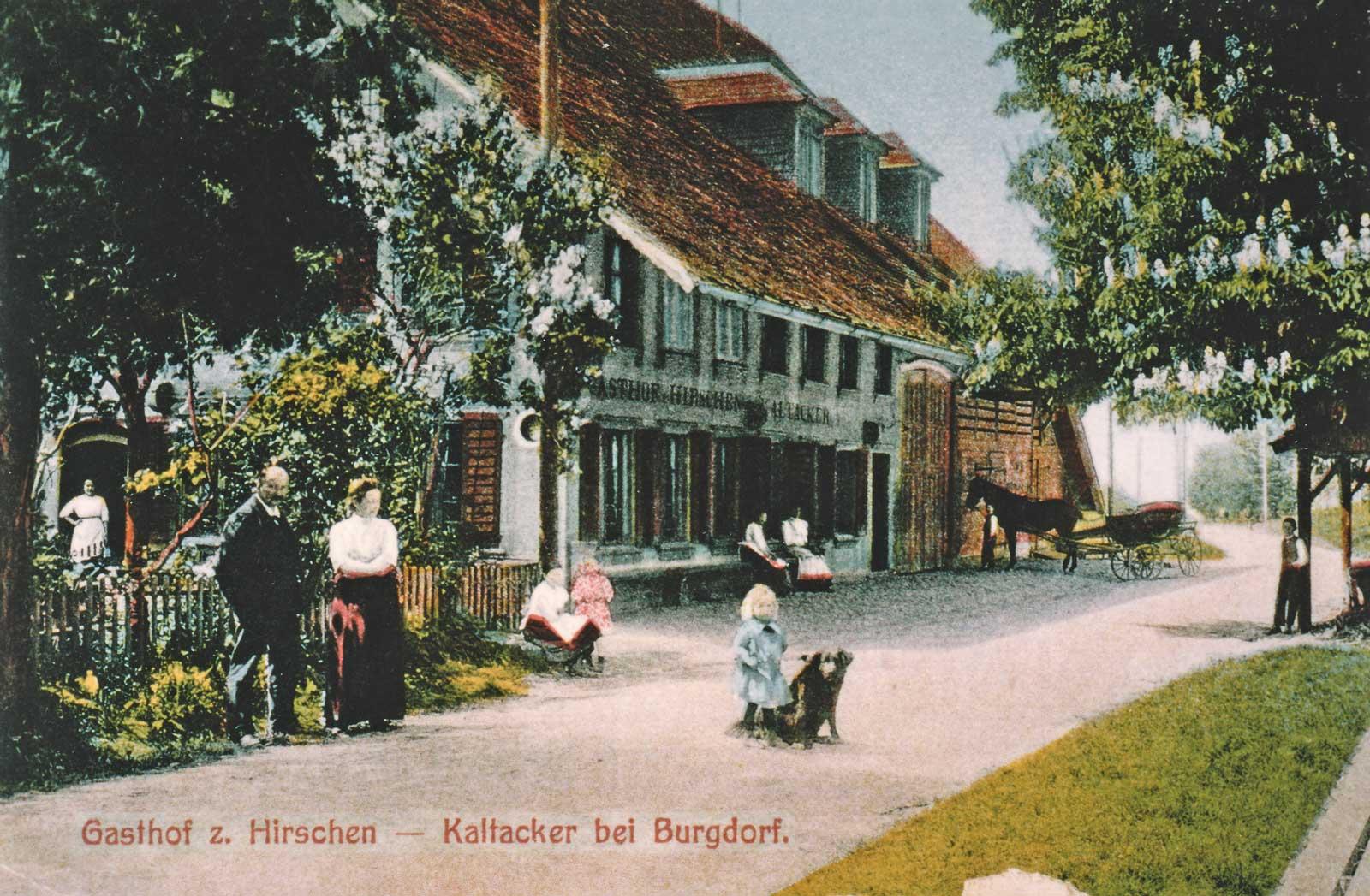 Hirschen Kaltacker 1843