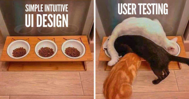Two images showing an example of a UI design for a cat feeding station and another with cats all on top of each other struggling to use it - highlighted by user testing