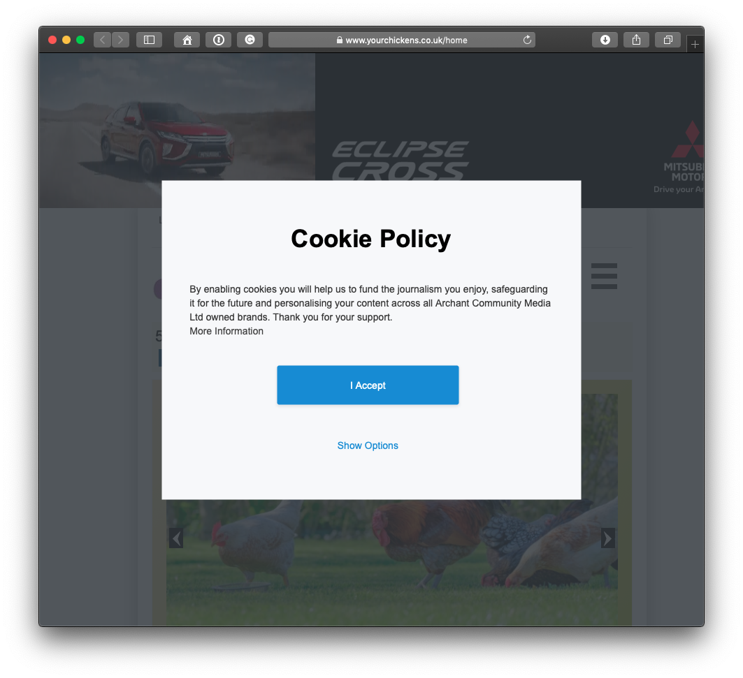 A typical cookie policy often seen when browsing the internet