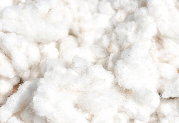 Mound of cotton