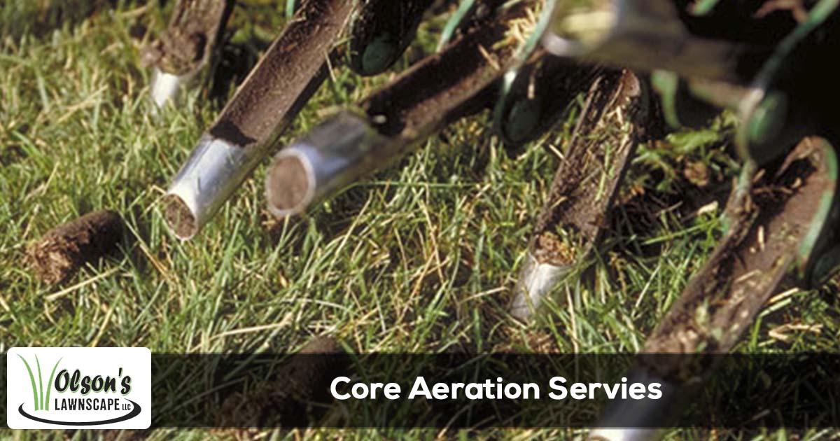 Core aeration service in Michigan