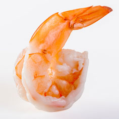 Atlantic Shrimp