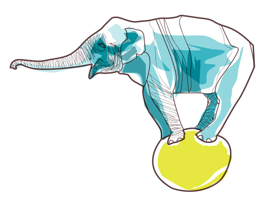 Elefante em cima de uma bola. Um conteúdo divertido pode ser motivo para engajar as pessoas.
