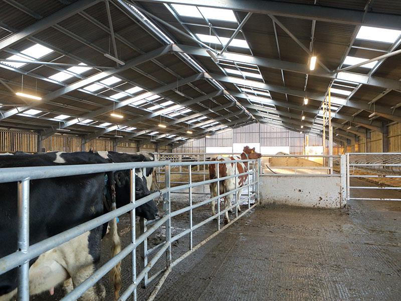 Grain Storage & Handling, Sheppey