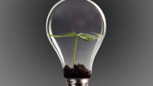 Além do previsível: Inovação onde não se espera