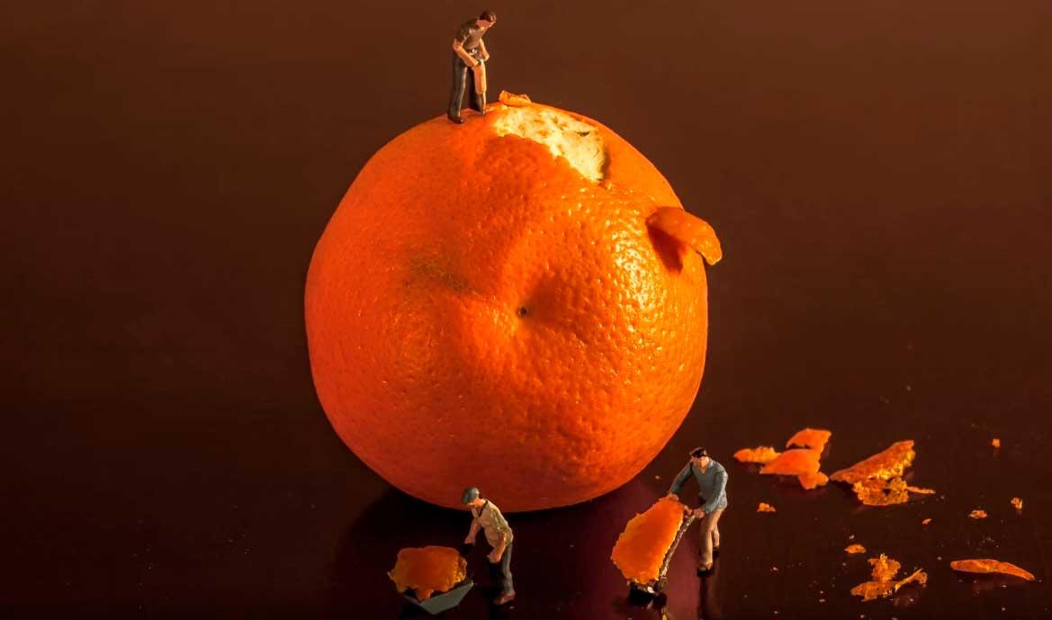 Bonequinhos trabalhando em equipe para descascar laranja