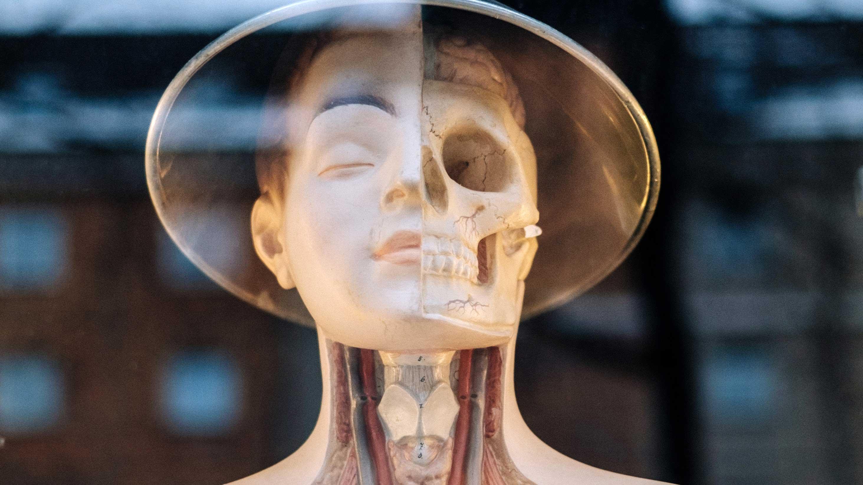 A Biotecnologia moldando o futuro da espécie humana