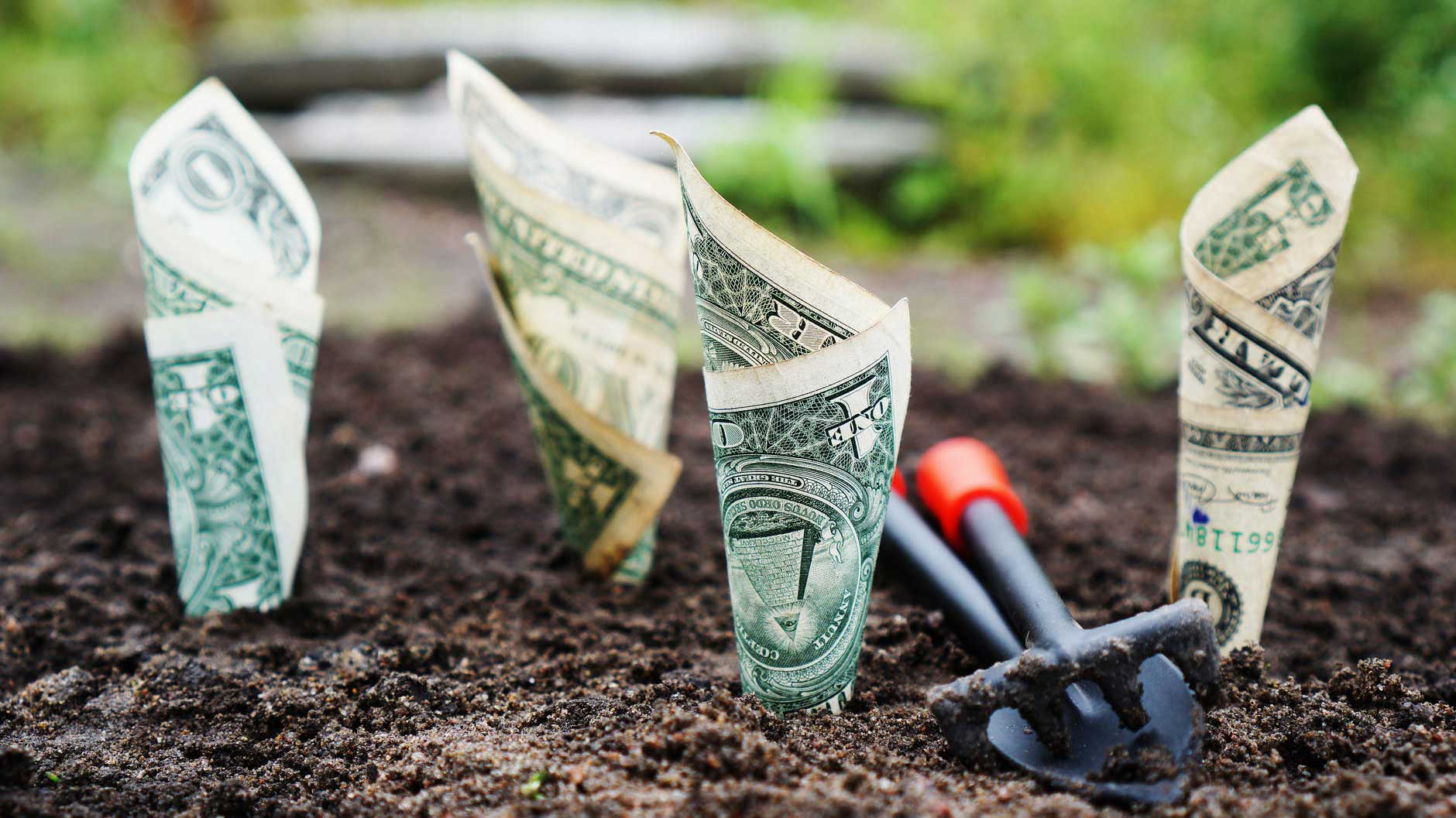 2 Dicas de Como Administrar Seu Dinheiro Mesmo Ganhando Pouco - Quatro notas de um dólar enterradas na terra com uma pá de brinquedo ao lado delas.