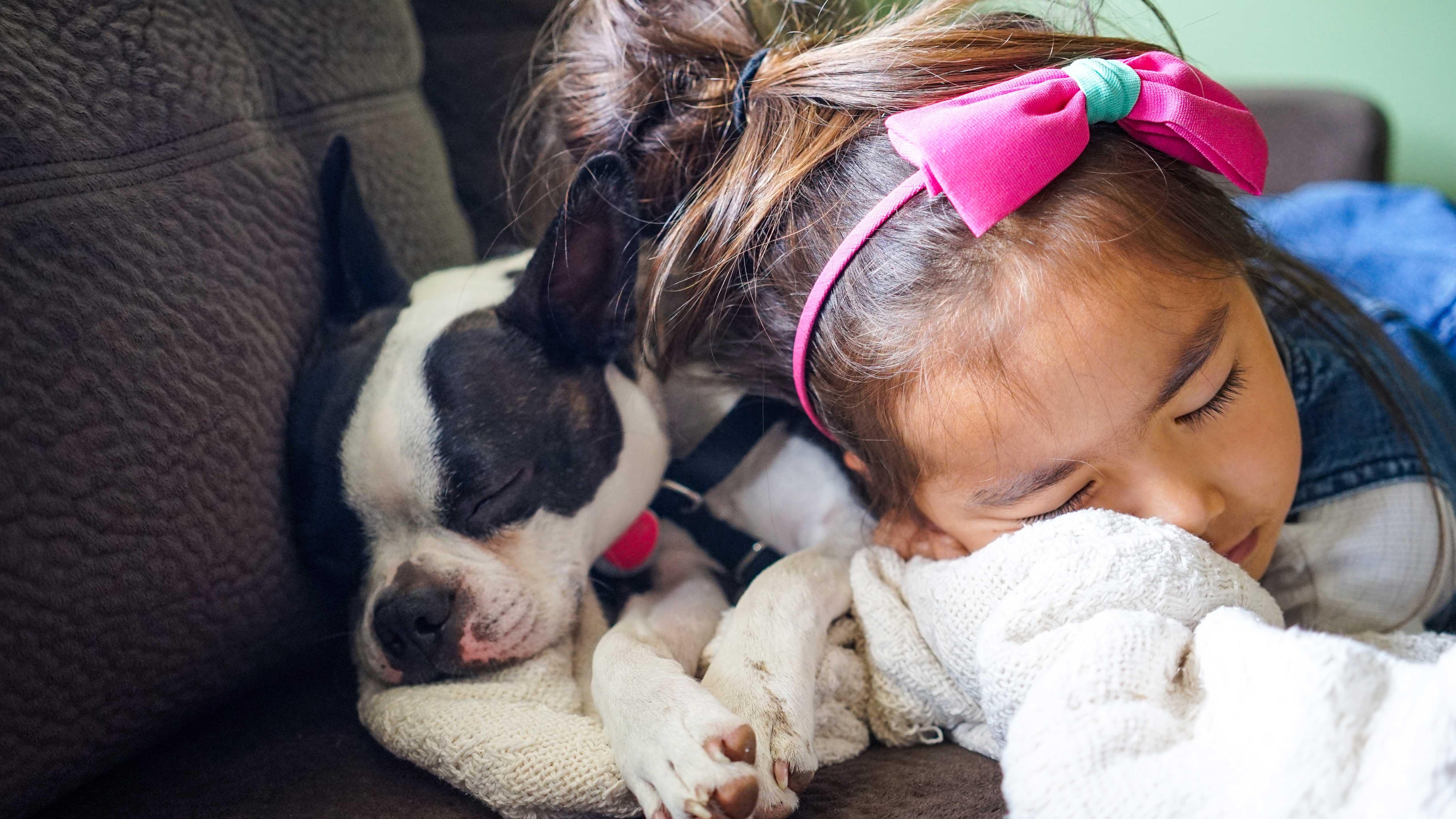 Animal de estimação: Por que meu filho deve ter um? - Menina adormecida ao lado de cachorro no sofá.