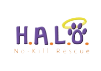 H.A.L.O No-Kill Rescue