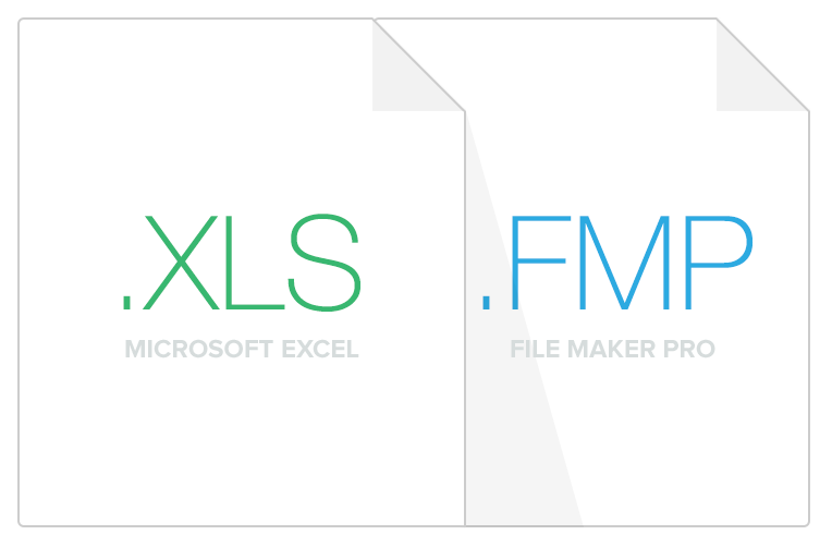 XLS and FMP file icon