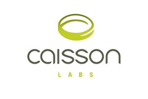 Caisson logo