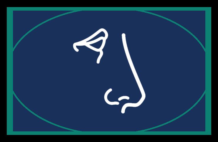 Sinus & Allergy Icon