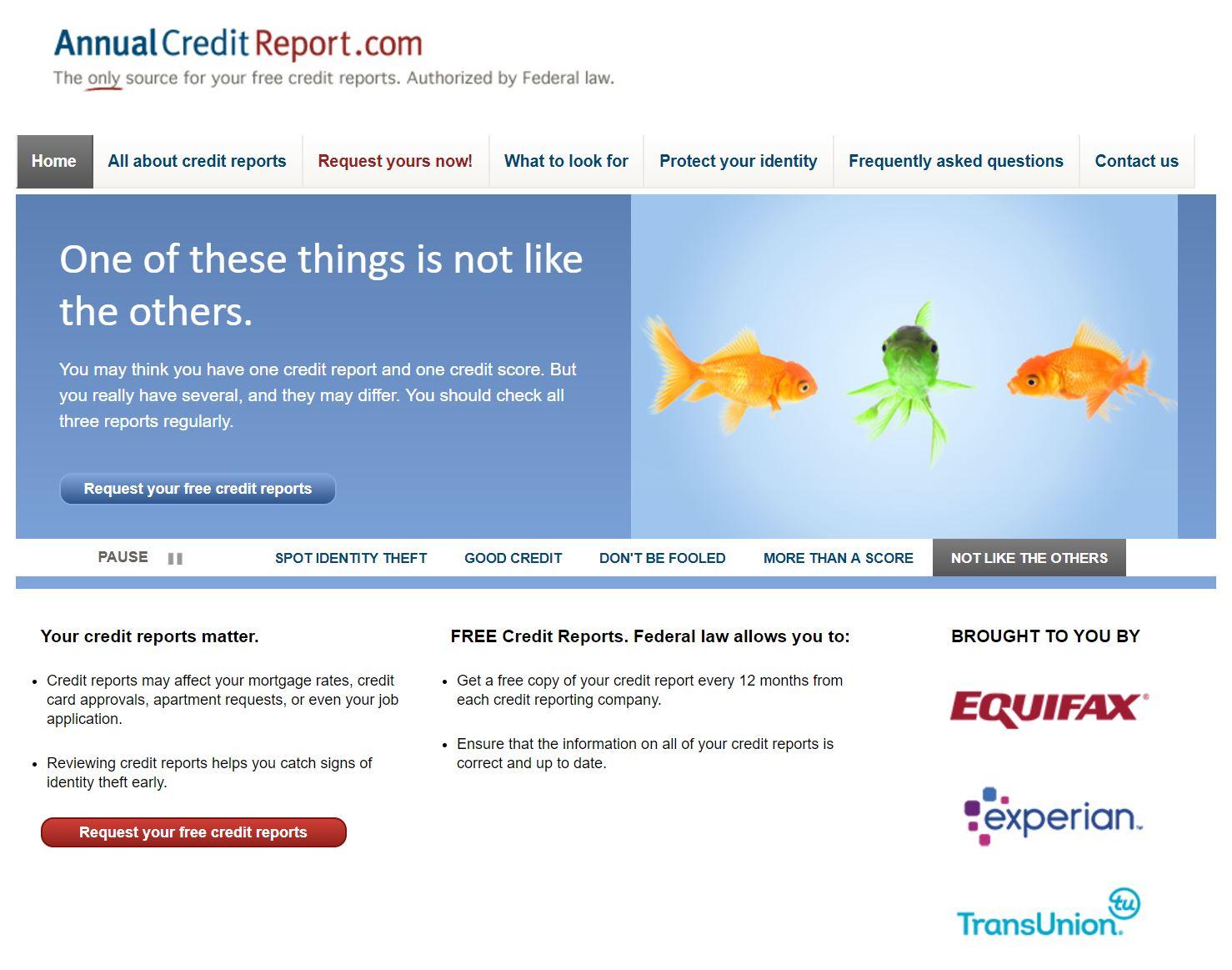 annual credit report 1