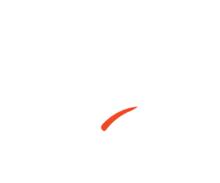 Zyara logo