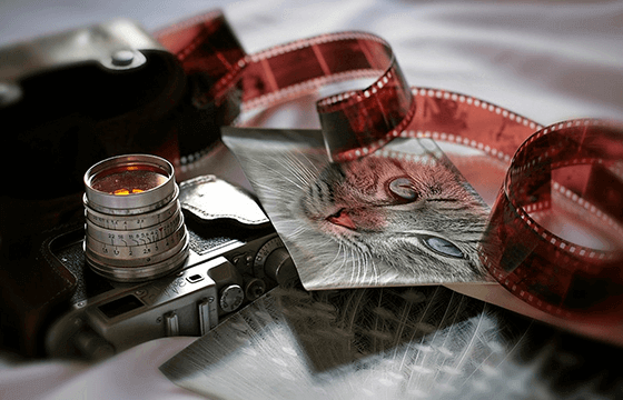 Film Developing and Slide Processing | Bergen County Camera