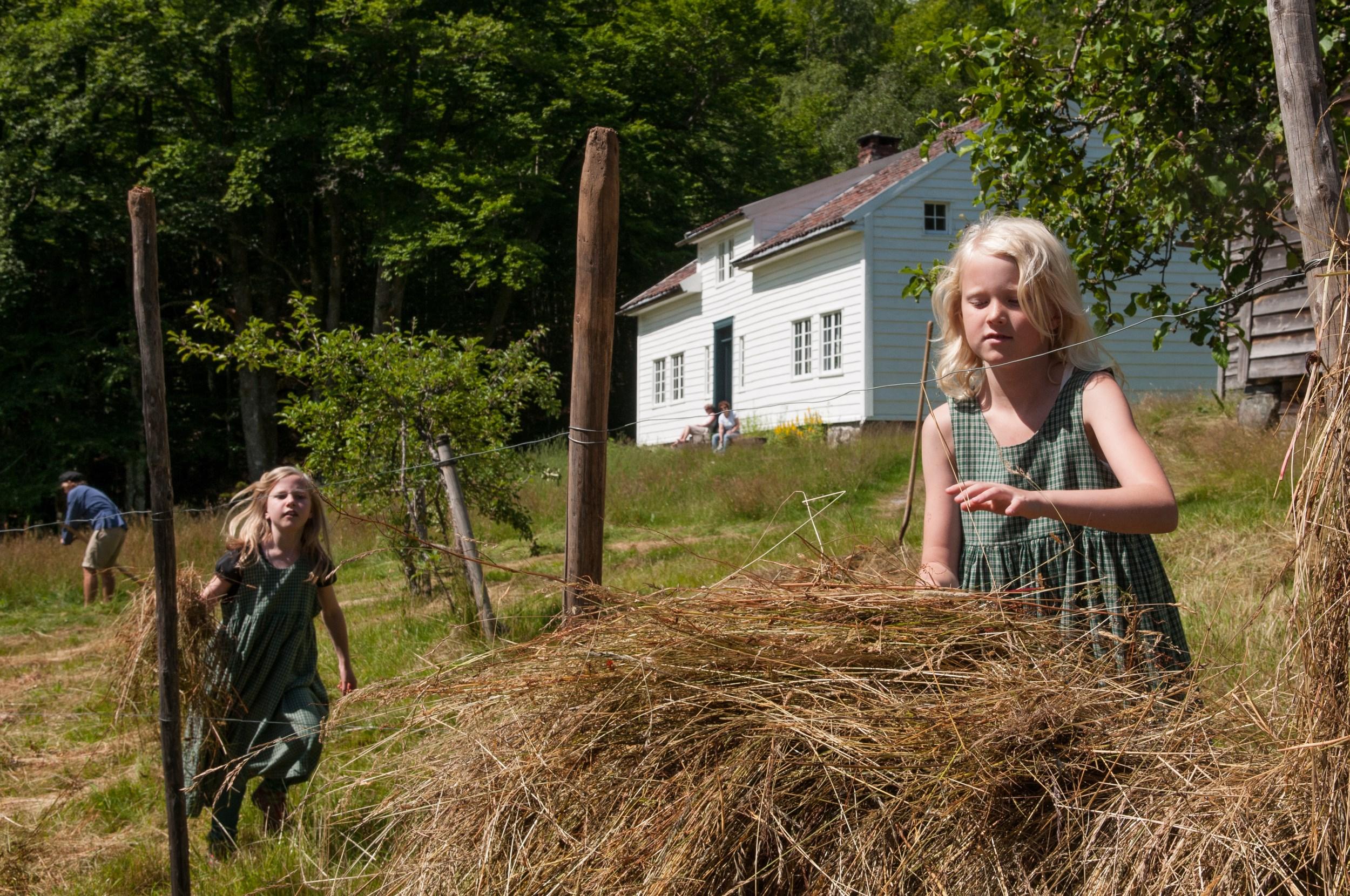 Picture of Nesasjøhuset, Ryfylkemuseet