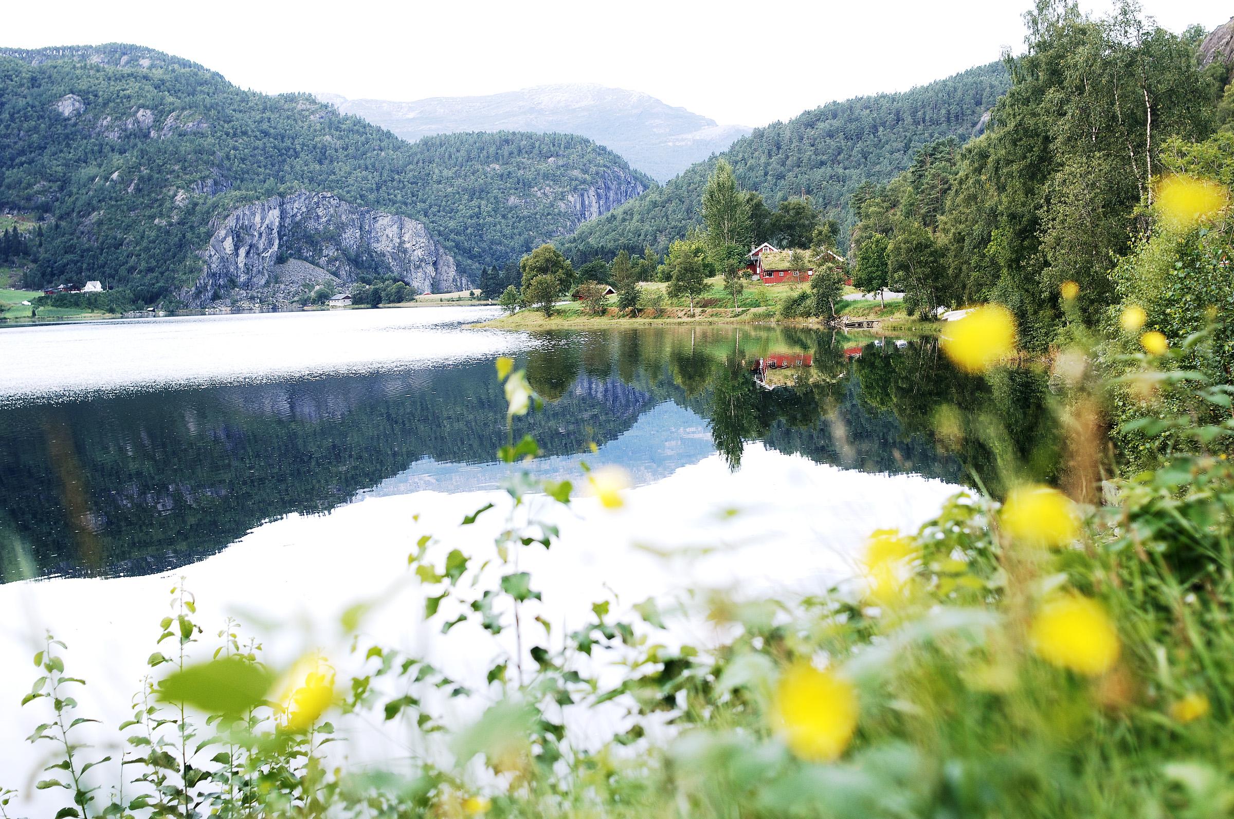 Picture of Suldalsvatnet
