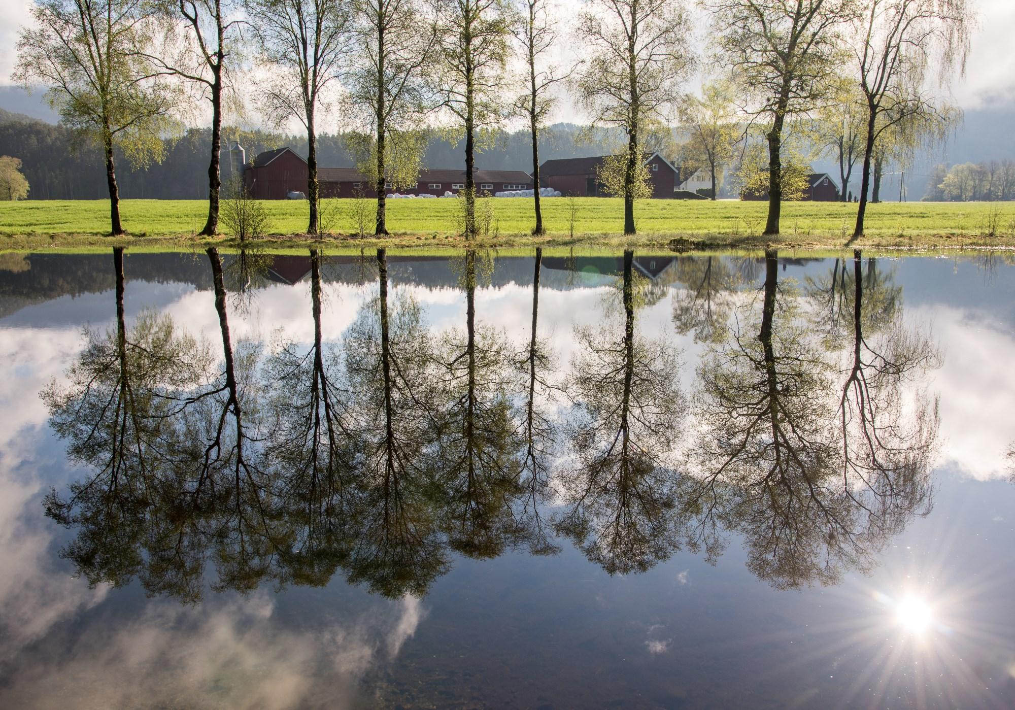 Picture of Ritlandsvatnet