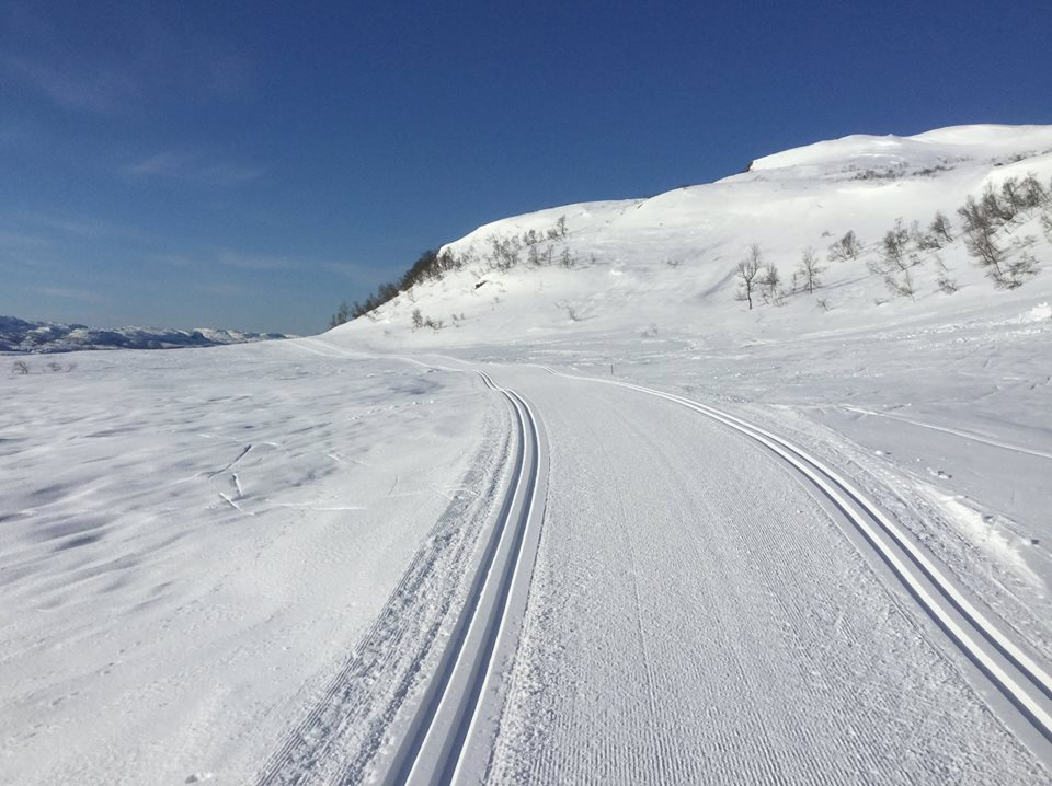 Ski trails in mountains