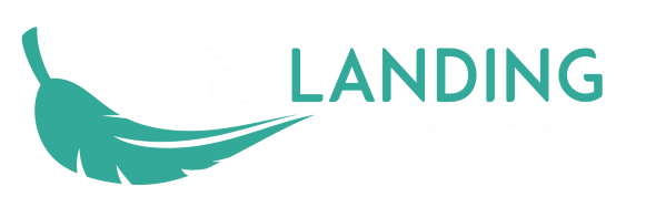 Safe Landing Recovery Logo