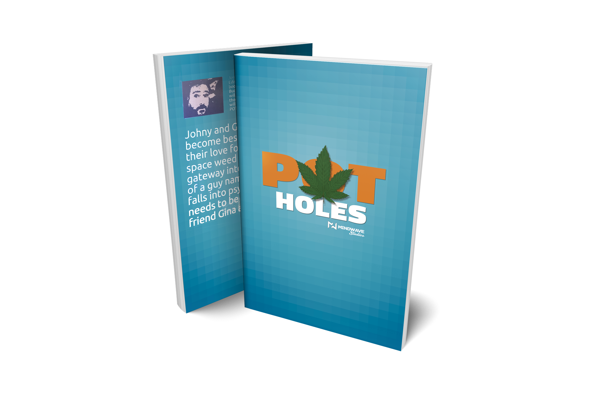 PotHoles book you can buy on Amazon if you click on the image.