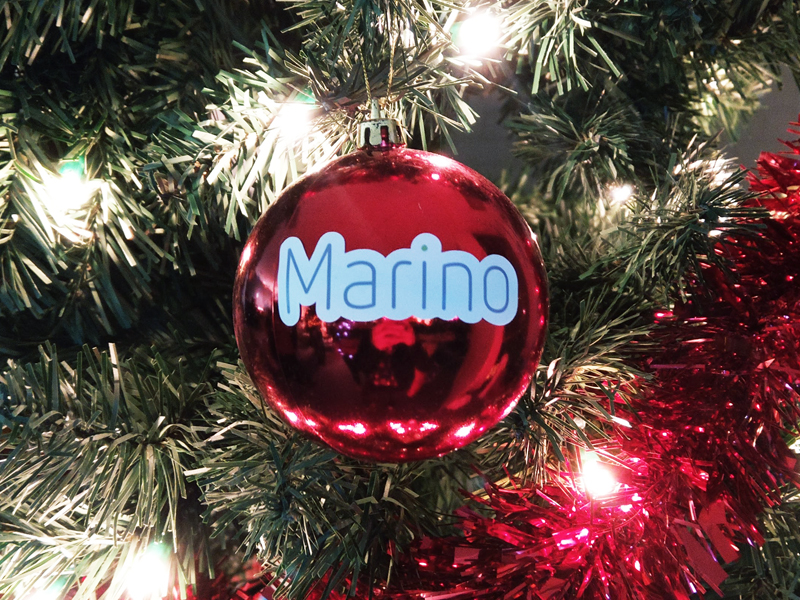 Marino Insights