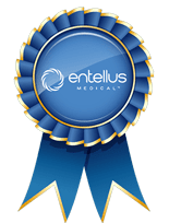 Excellence by Entellus Medical.