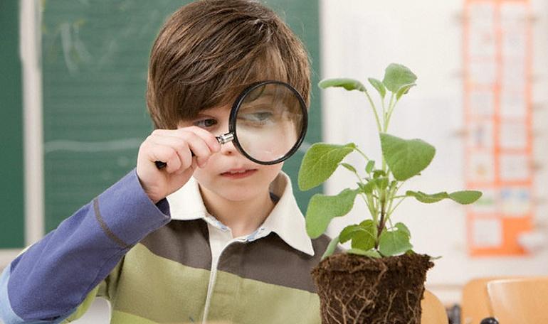Программа индивидуального маршрута обучения - естественно-научный
