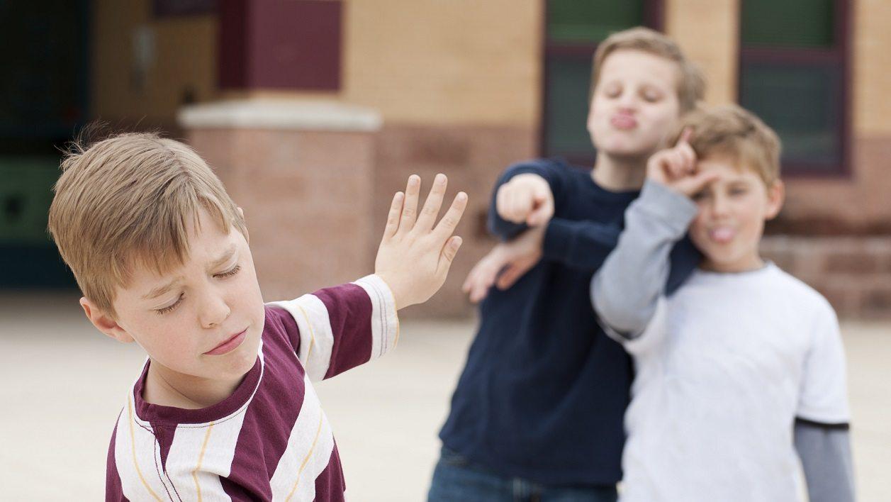 Профилактика буллинга в школьной среде