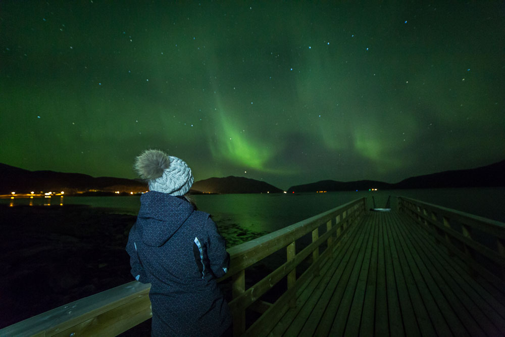 Northern Lights Chase with Authentic North Norwegian Charm