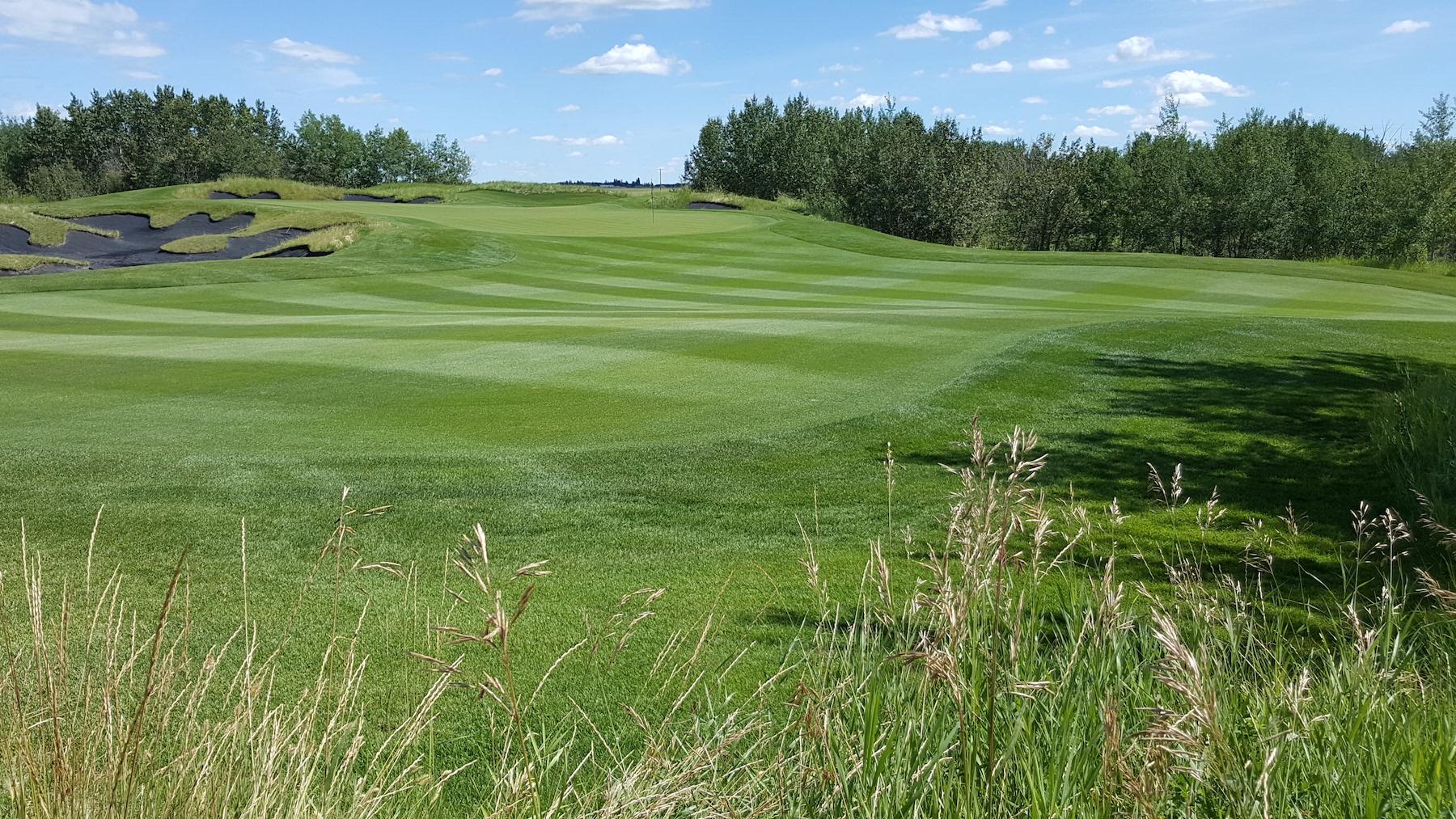 Carnmoney Golf & Country Club