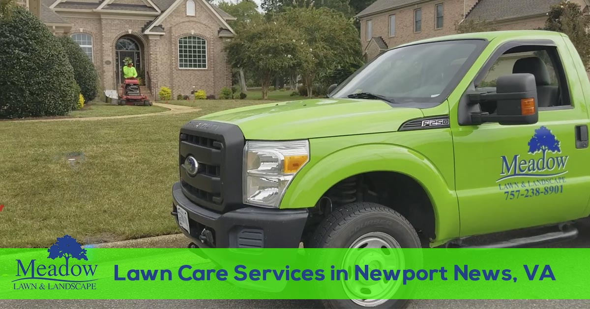Newport News Virginia Lawn Care Service