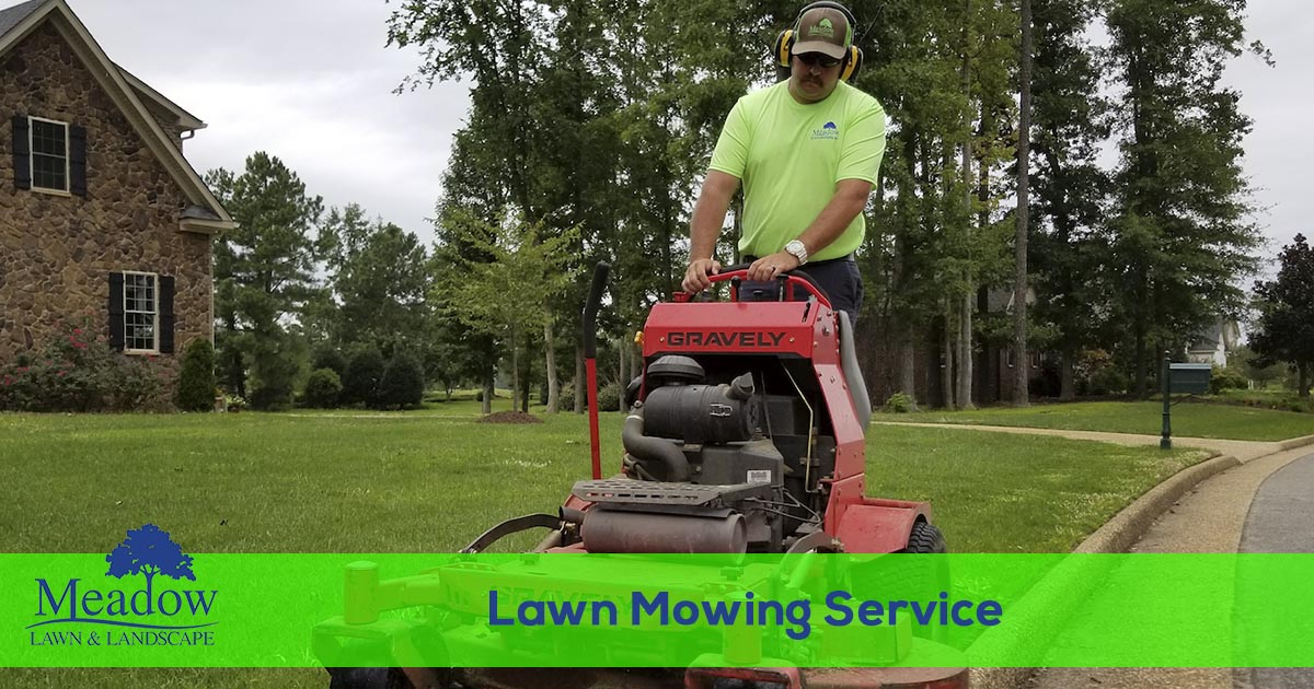 Lawn Care Services from Meadow Lawn & Landscape