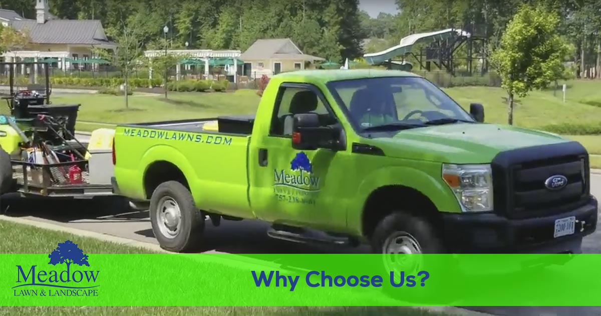 You should choose Meadow Lawn & Landscape for all of your lawn care needs.