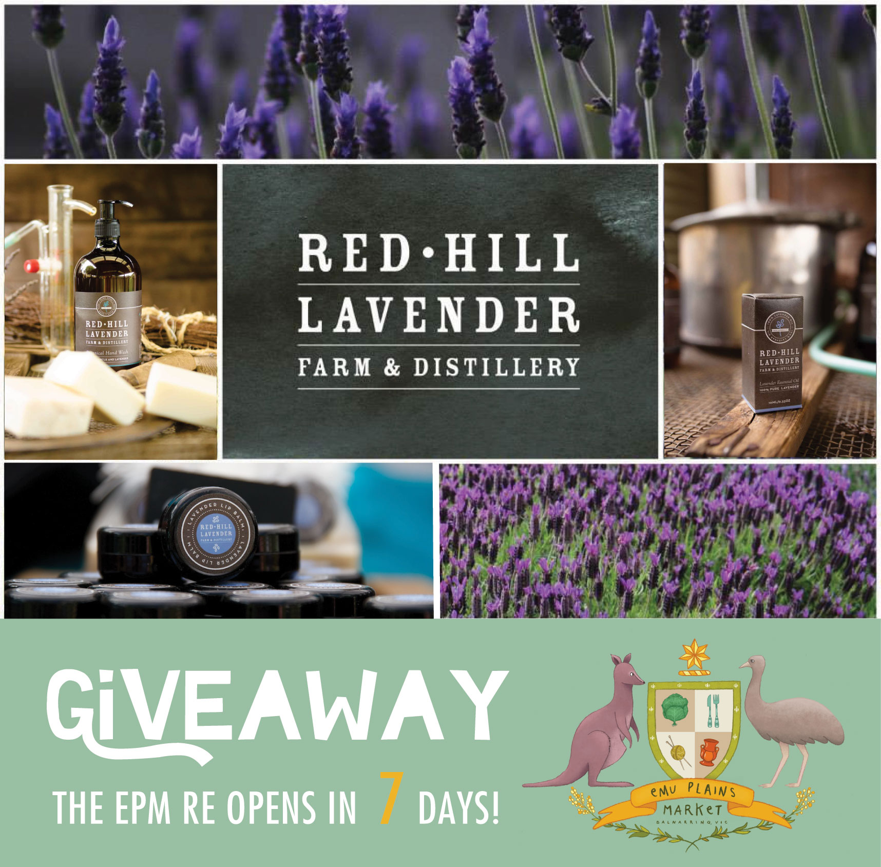 GIVEAWAY : RED HILL LAVENDER FARM & DISTILLERY